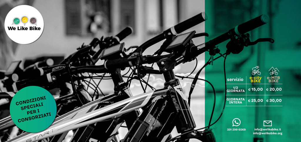 Servizio e-bike 2020